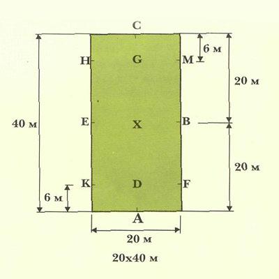 Размеры и схема манежей для