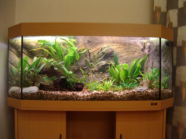 Декорирование аквариума своими руками фото 375