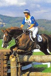 Шведская теплокровная порода лошадей Shvedteplokrov3